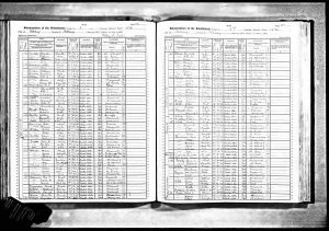 Bratt, Edgar, 1905, Census, New York, Albany Ward 15, Albany, New York