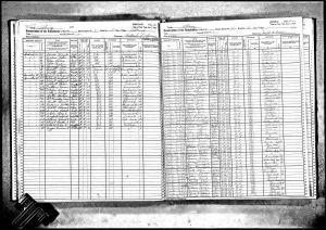 Bratt, Gerrit Teunis, 1925, Census, New York, Albany, Albany, New York, USA