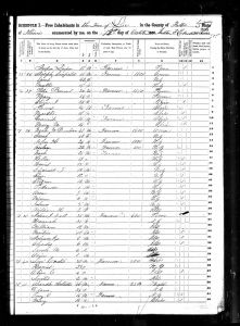 Dunbar, Noah W., 1850, Census, USA, Lee, Fulton, Illinois, USA