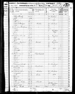 Bratt, Henry, 1850, Census, USA, Albany Ward 2, Albany, New York
