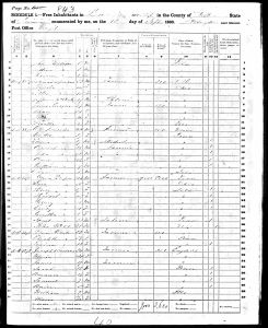 Luper, David, 1860, Census, USA, Lee Township, Fulton, Illinois