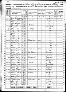 Bratt, Henry, 1860, Census, USA, Albany Ward 10, Albany, New York