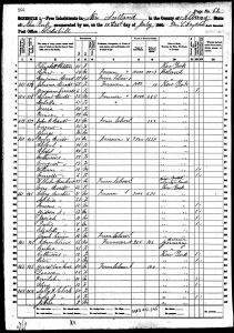 Bratt, Henry David, 1860, Census, USA, New Scotland, Albany, New York