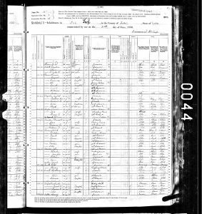 Luper, David, 1880, Census, USA, Lee Township, Fulton, Illinois