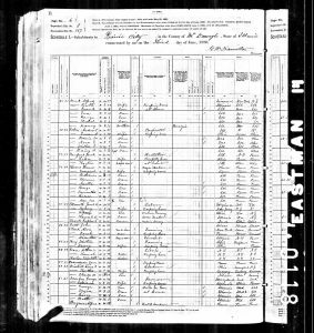Mead, Alfred, 1880, Census, USA, Bardolph, McDonough, Illinois