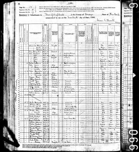 Bratt, John, 1880, Census, USA, Highland, Orange, New York