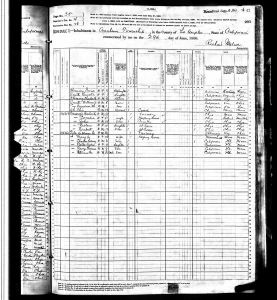 Smith, William Jasper, 1880, Census, USA, Anaheim Township, Los Angeles Co (now Orange Co), California (2 of 2)