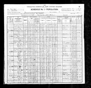Macy, Sarah A, 1900, Census, USA, Albany, Albany, New York, USA